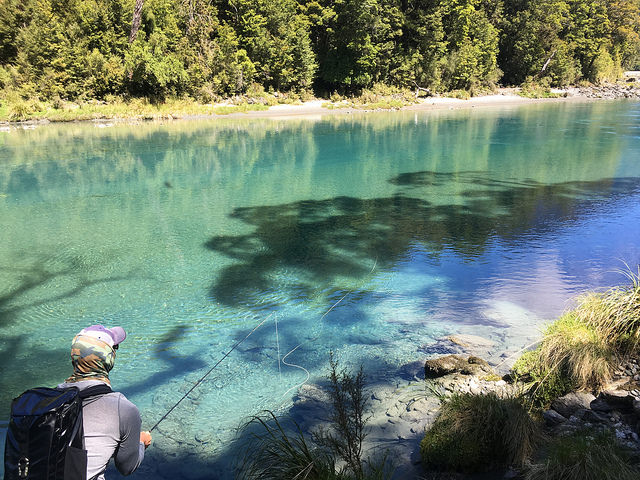 fly fishing the south island at Cedar lodge