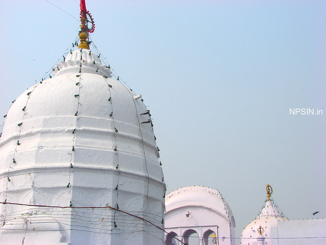 Shikhar of Shri Brahamlal Ji Maharaj Mandir