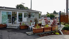 Cat & Cloud Café Santa Cruz