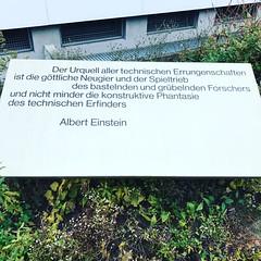#sbfi #weko #einstein #zeugenaussage #inspiration