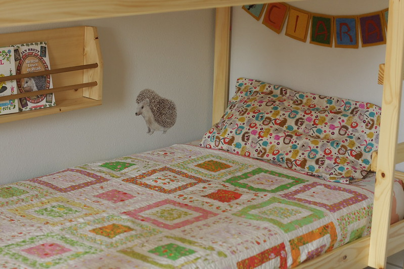 C's lower bunk