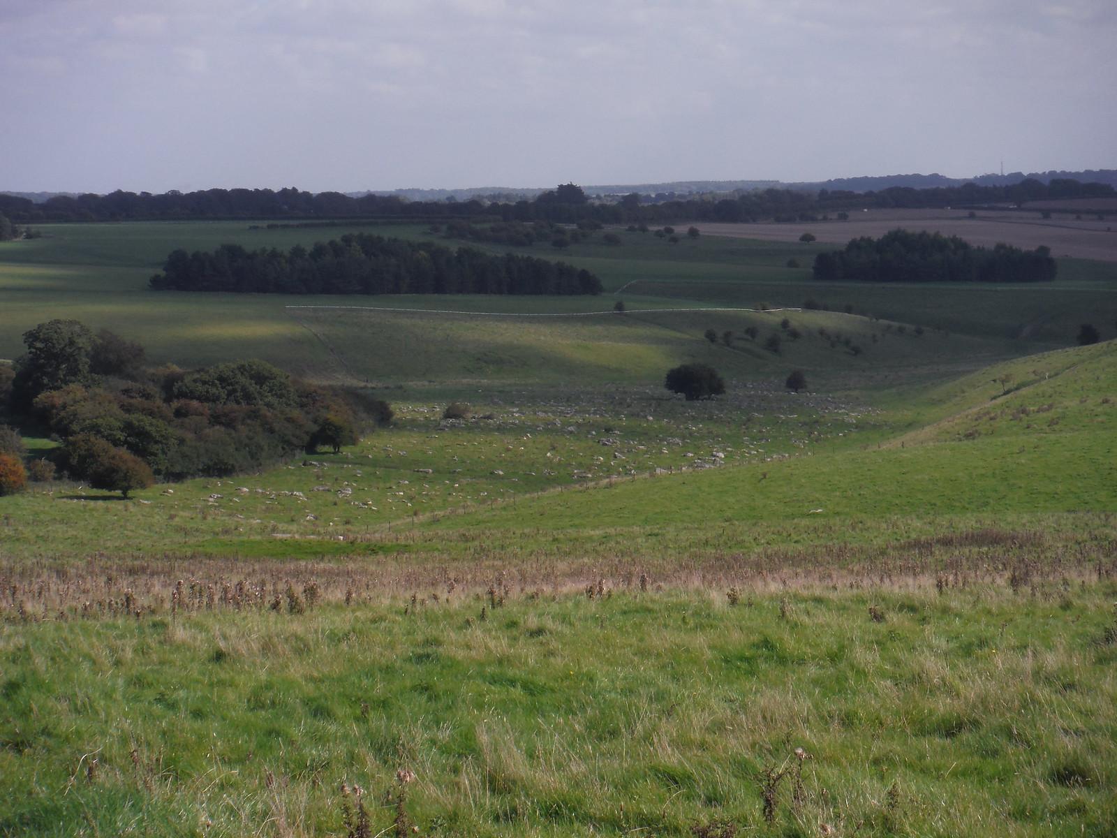 Fyfield Down Sarsen Field SWC Walk 255 Pewsey or Marlborough Circular via Avebury