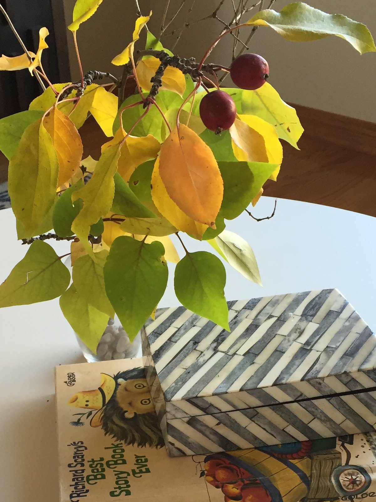 Fall arrangement on white living room table with grey box and book