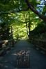 Photo:20151016 Kyoto Ohara 3 By BONGURI