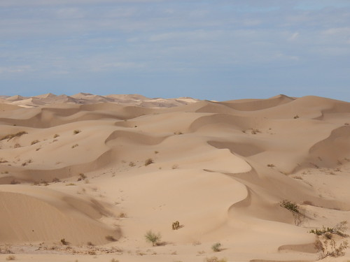 Imperial Sand Dunes - 2