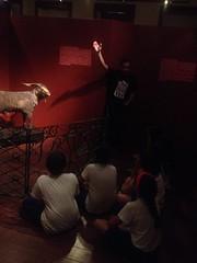 Museu do Ceará e Passeio Público