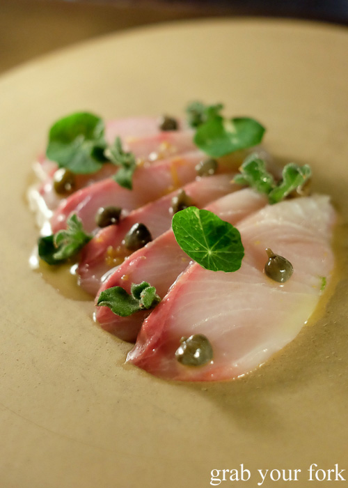 Raw kingfish at Bennelong Restaurant, Sydney food blog restaurant review