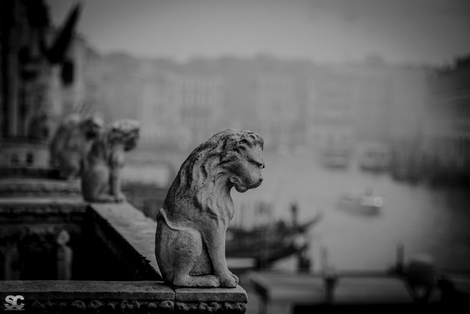 Venice - Cà d'Oro