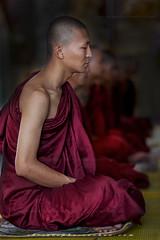 _MG_5622-le-18_04_2016-wat-thail-wattanaram-maesot-thailande-christophe-cochez