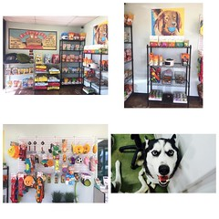 Lobby is restocked and reloaded full of Petropolis Express goodness. Come and treat your dog to the best. #petropolisexpressshop at #flyinghighpetresort in #camarillo near #ventura #venturacounty #805
