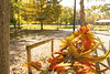 Autumn Garland in the Sun