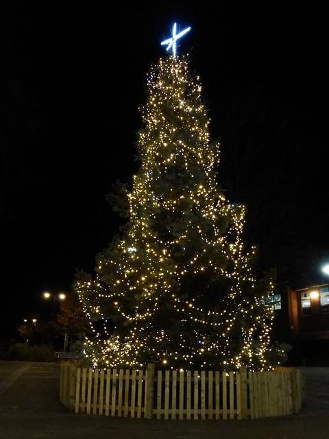 Eastleigh Christmas tree, Panasonic DMC-TZ35