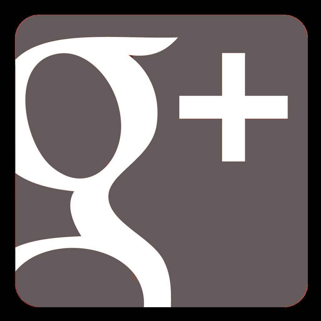 google + widget grey