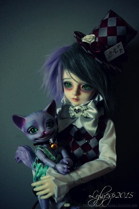 [ Shin - KDF Bory ] Cheshire chaton ? (23/12/2018) 21551185286_7e443b09b3_o
