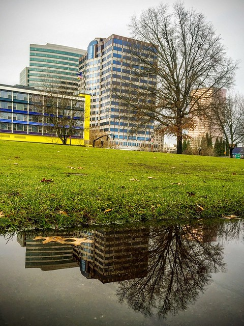 Reflections, North Waterfront