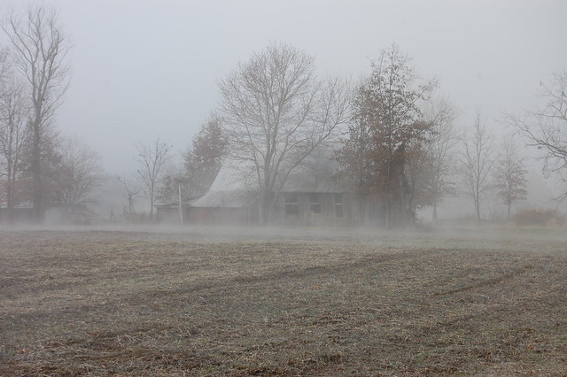 Fog embraces the old barn.