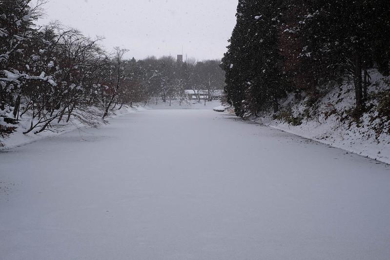 弘前城のお堀