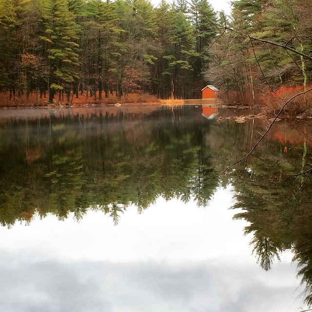 Beautiful little lake an hour's walk from my brothers place. The light mist on the water doesn't really show but just added to the picturesqueness of it all. #nagogpond #acton #xmasinacton #massachusetts