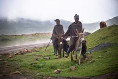 Basotho farmers