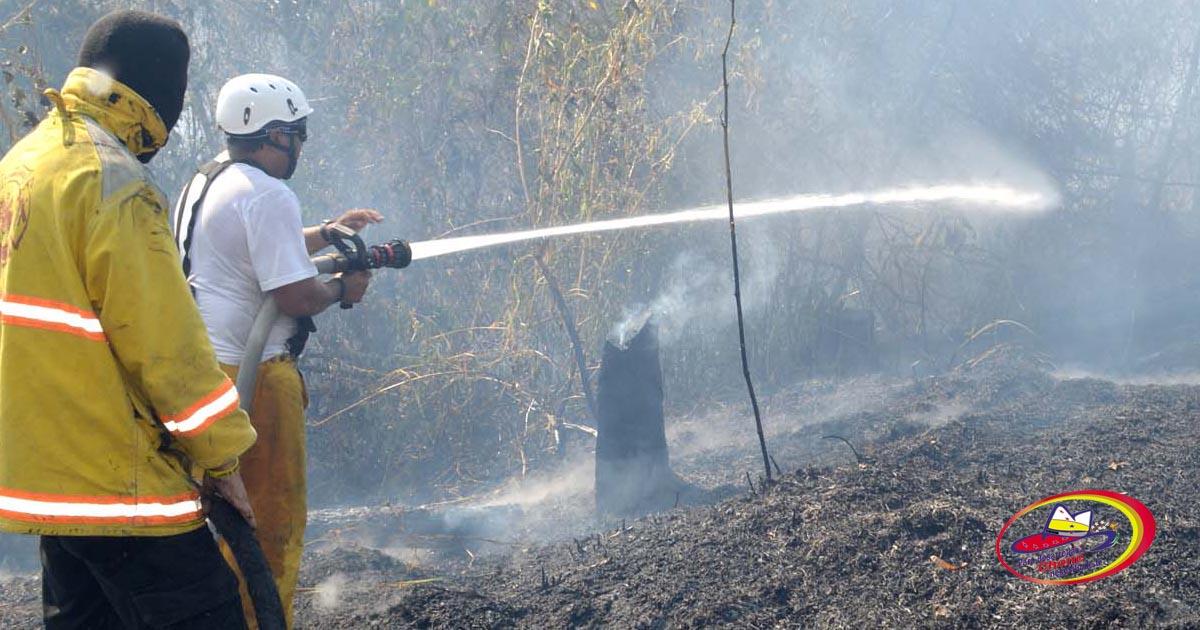 Buscarán sancionar a causantes de incendios forestales en Chone