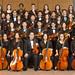 AHS Chamber Orchestra 2016-17