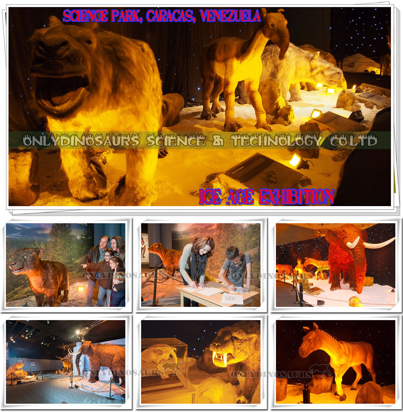 Ice Age Exhibits