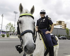 The Long Nose of the Law: Officer #51 on Third- Patrols the Three Horse Town
