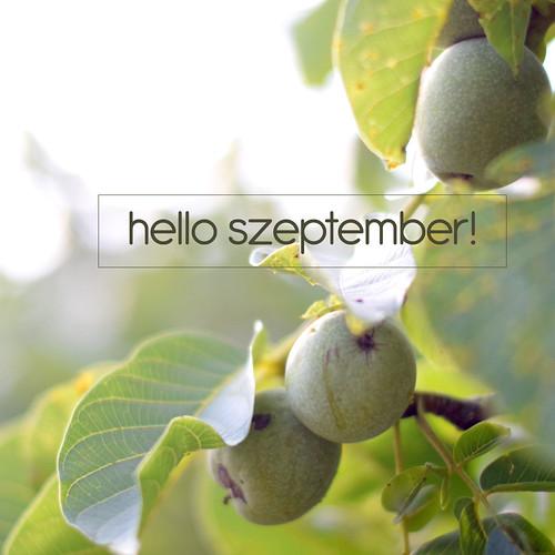hello-szeptember2015
