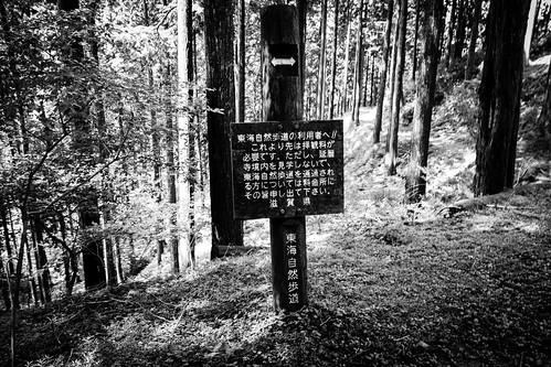 IMG_2825_LR__Kyoto_2015_09_04