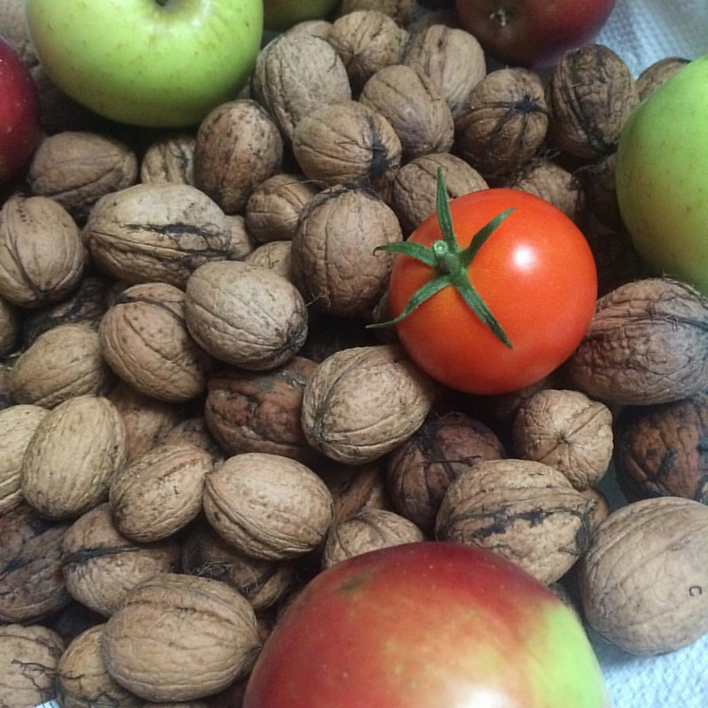 Gartenfreuden, die Nüsse wurden mir geliefert von Freunden❤️ #nüsse #paradeiser #äpfel #apfeldazu #auchfaulegärtnerinnenerntenwas #apfelkuchen #foodbloggersfreuden #austrianblogger