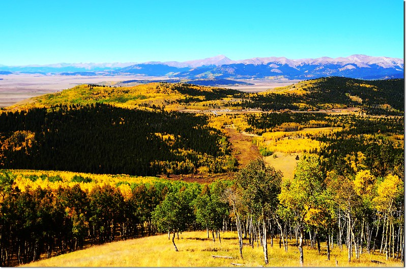 Fall colors at Kenosha Pass, Colorado (13)