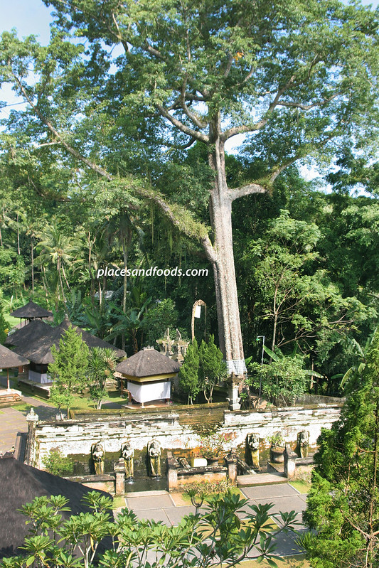 goa gajah top overview