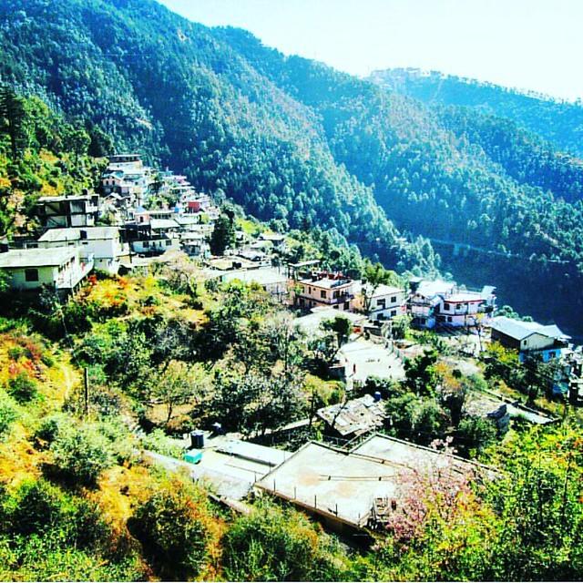 Places To See In Shimla Rajgarh At Shimla: Best Time To Visit Kufri