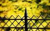 _castle fence