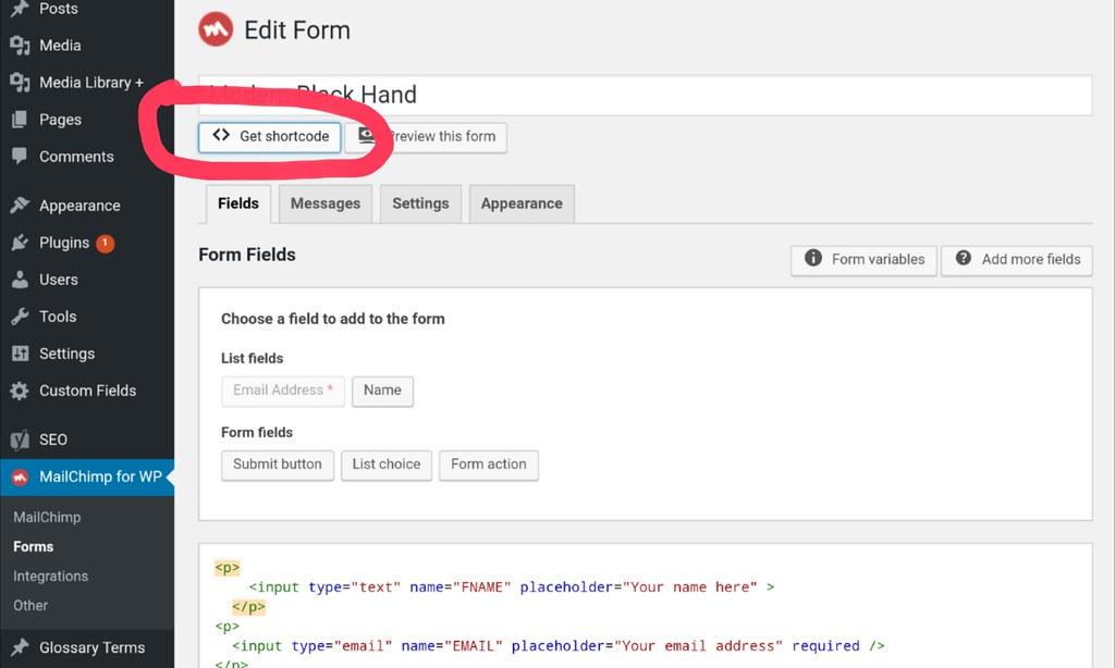 MailChimp plugin Form
