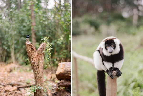 RYALE_Madagascar_Blog2_003