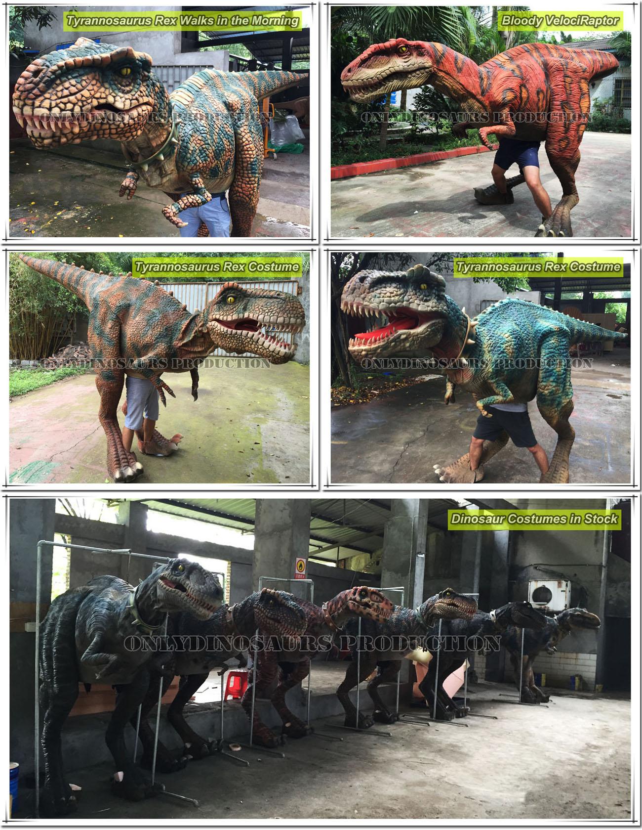 Dinosaur Costumes in Stock