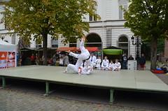 vrijetijdsmarkt judo31