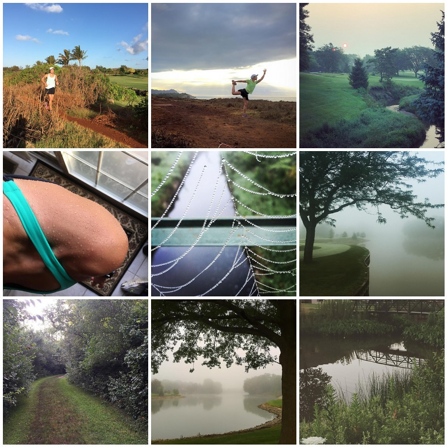 Along My Run - July 2015
