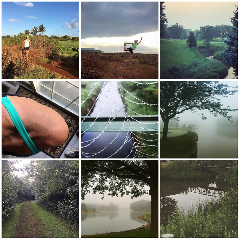 Along My Run - July 2015