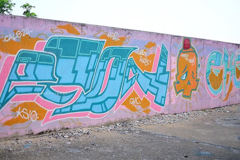 DSCF1796