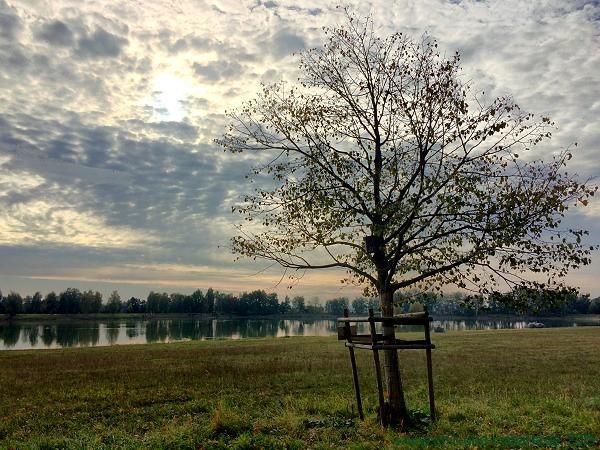 Satzdorfer See