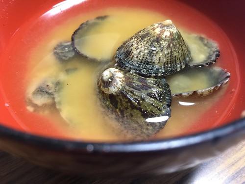 陣笠貝の味噌汁