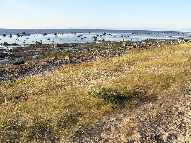 Dirhami beach, Estonia