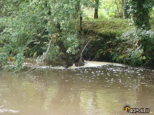 Vertedura no río Parga. Imaxes en Baamonde