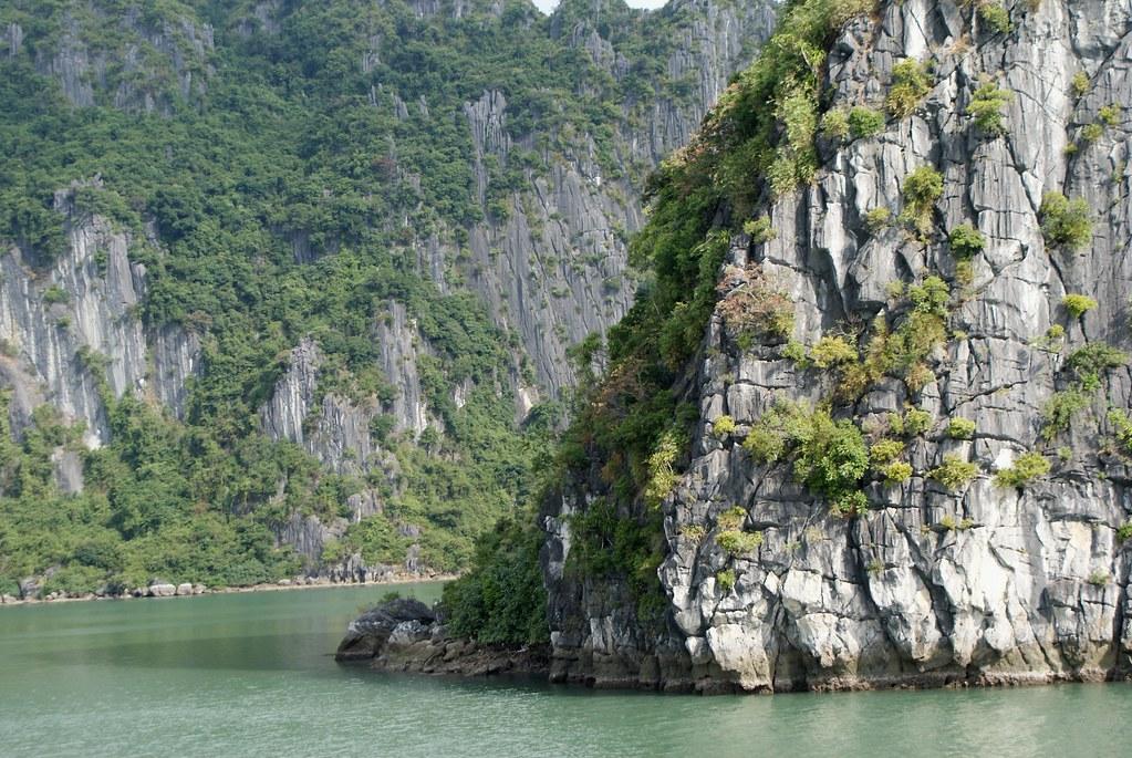 L'érosion sculpte des animaux mythiques et des portraits mystérieux dans la roche de la baie d'Halong au Vietnam.