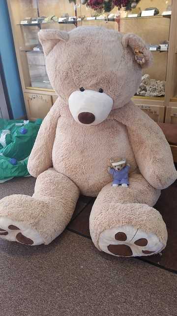 Little Bear With Big Bear