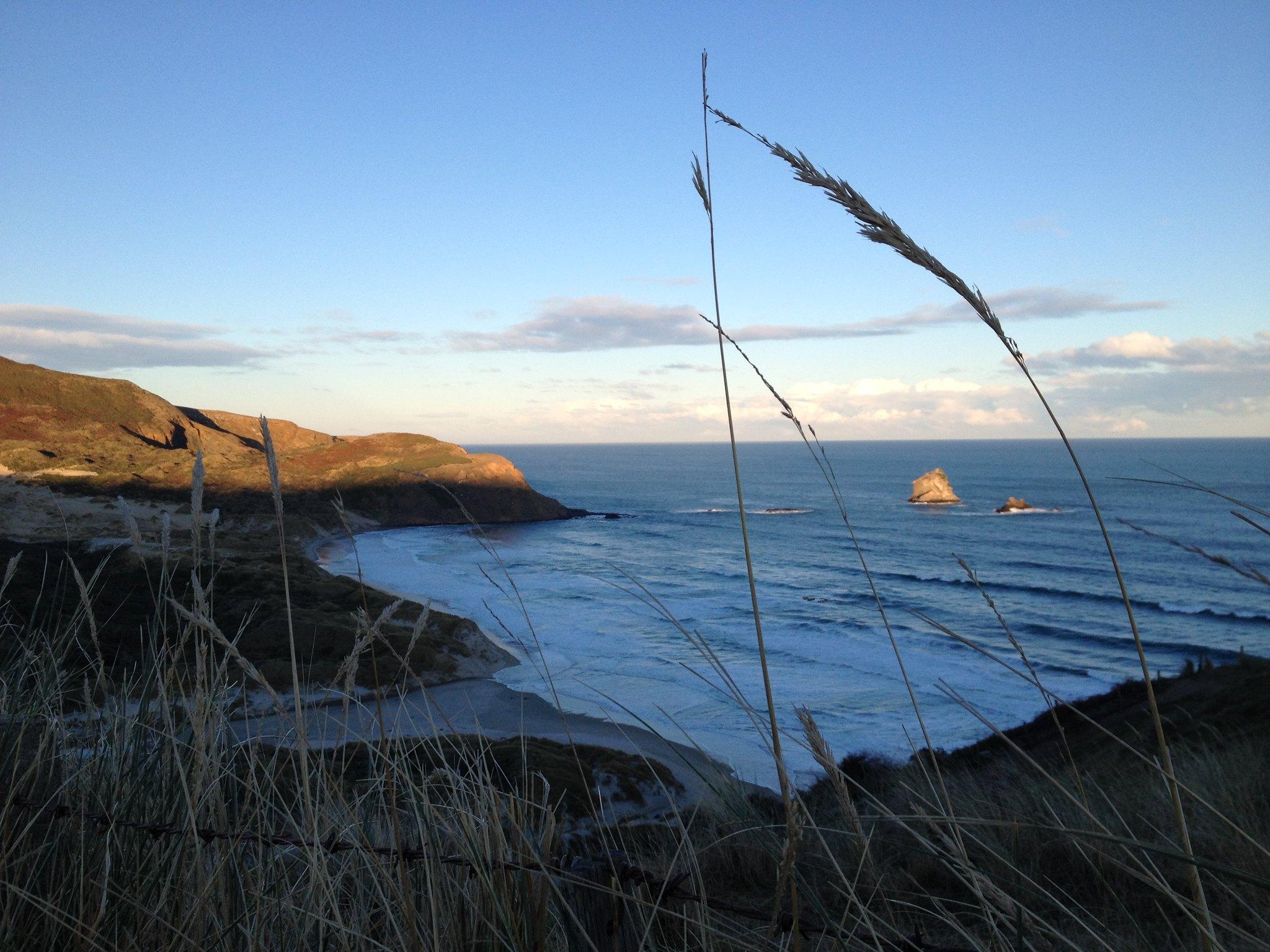 Sandfly Bay, Dunedin Peninsula