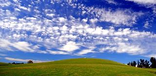 Windows XP backgrounds , (my Version) , 4 seasons