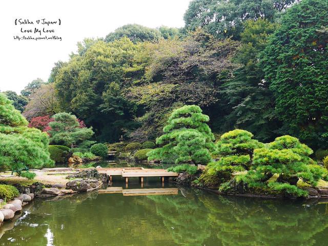日本東京自由行新宿御苑庭園景點 (32)
